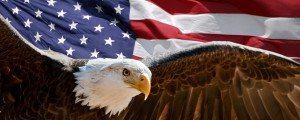 https://www.dreamstime.com/stock-photos-bald-eagle-flag-image21120633